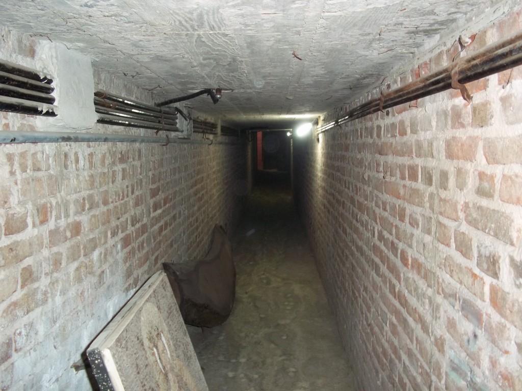 115 tunel centro
