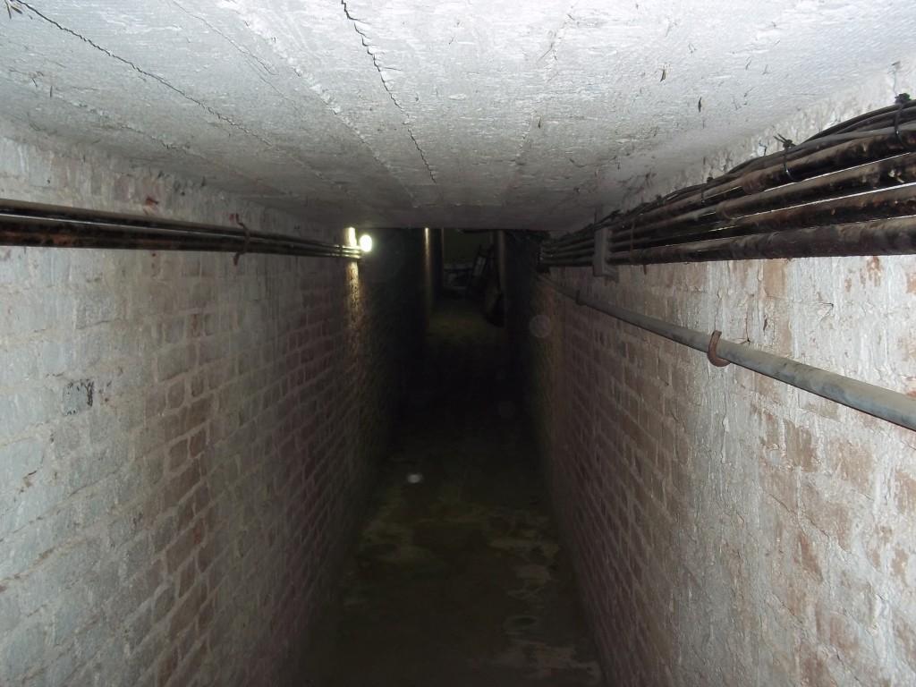 116 tunel centro