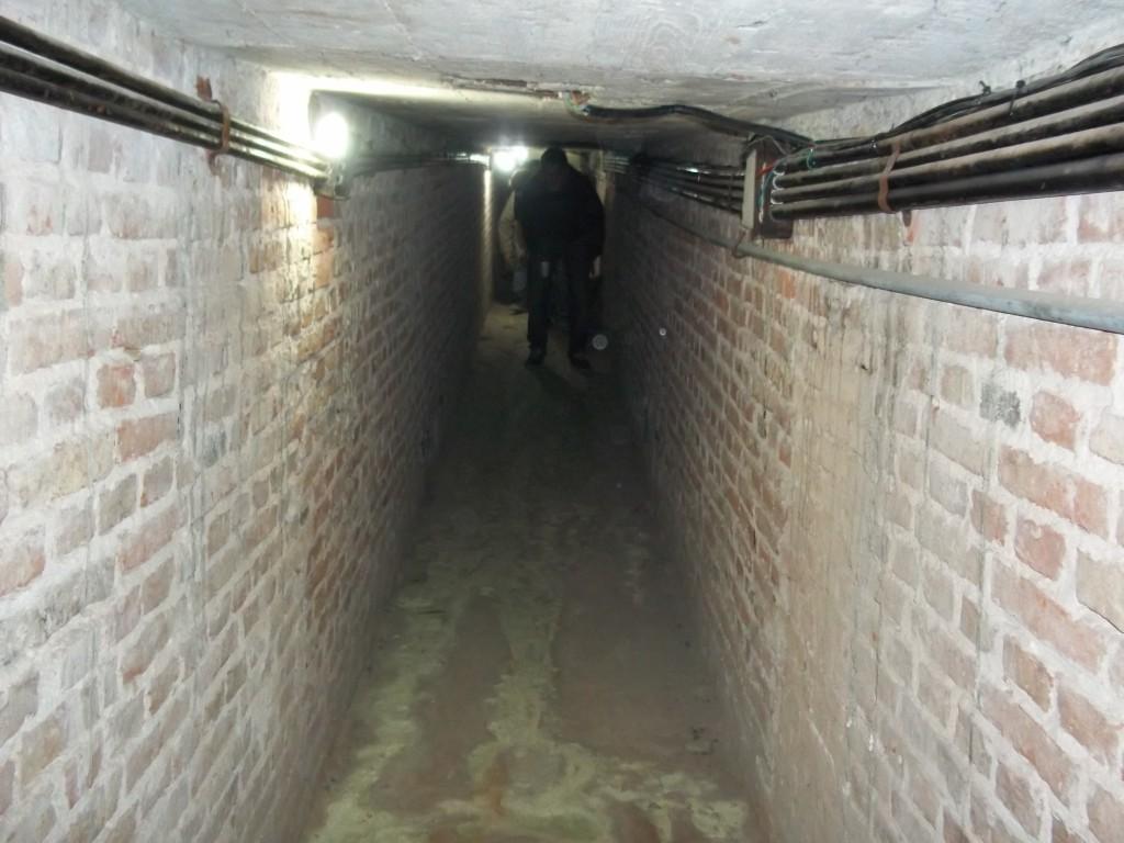 117 tunel centro